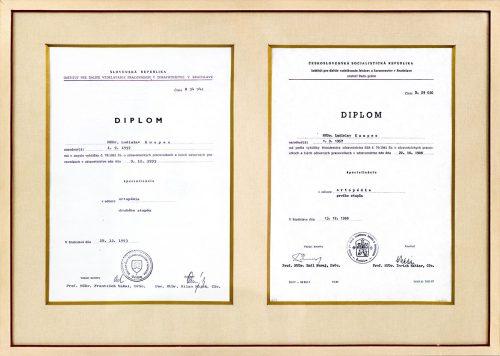 Diplom špecializácia ortopédia